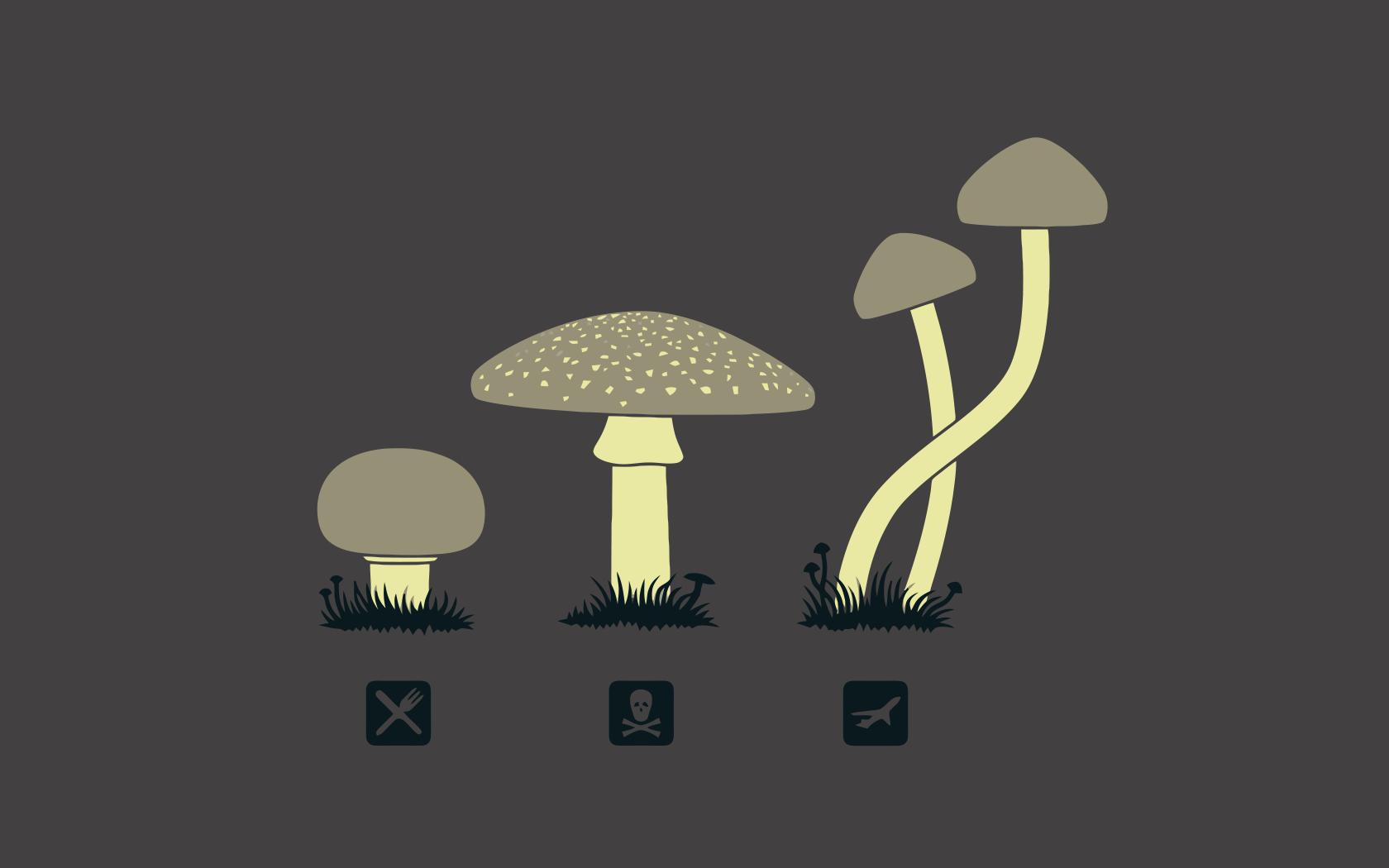 Mushrooms-032100_28-10-08.png